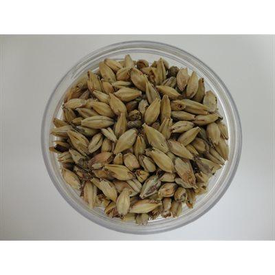 Aromatic Malt 1 lb (454 g)