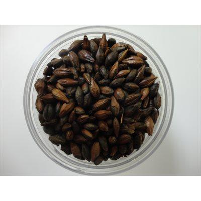 Chocolate Malt 1 / 4 LB