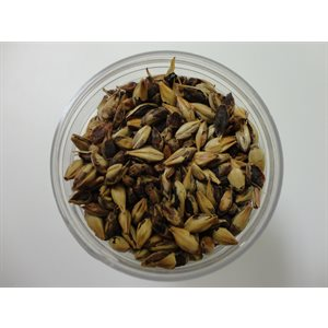 Malt Caramel (Crystal) 70 / 80 L 25 kg (55 lb)